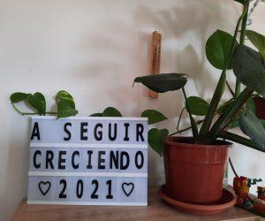 Sobre la nueva década, el 2021 y más